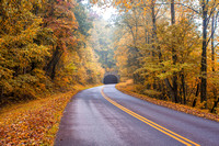 Fall Road on Blue Ridge Parkway