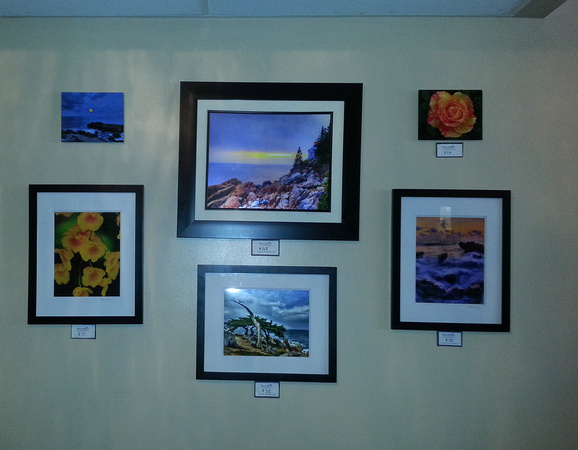 Bash American Bistro, Sunrise, FL - Melissa Machonis Photography on display