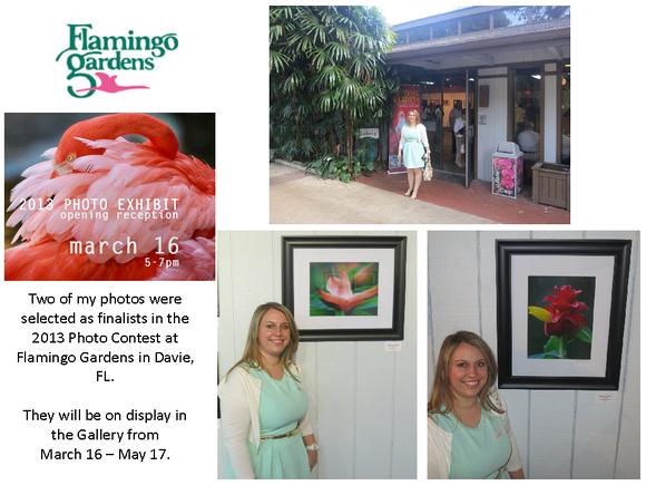 Flamingo Gardens Photo Contest 2013